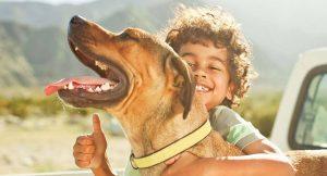 Honden & kinderen