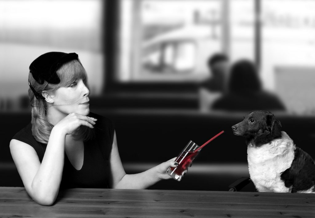 9-tips-betere-comminicatie-hond