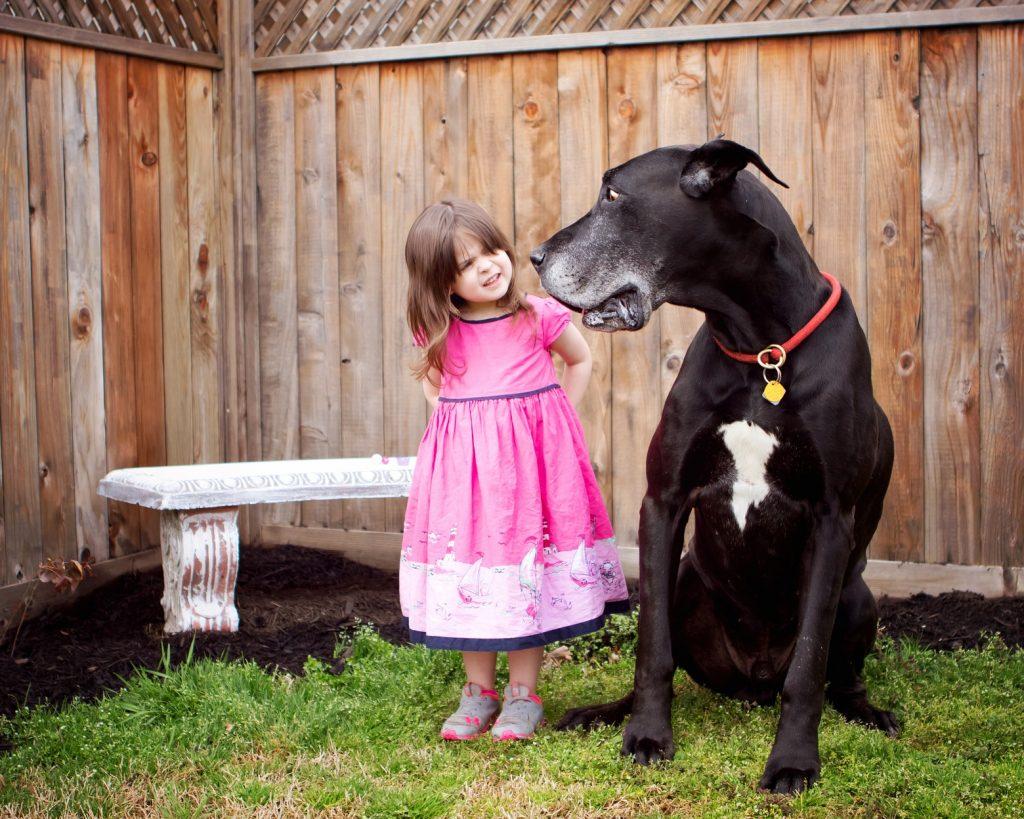 wezenlijk contact met je hond